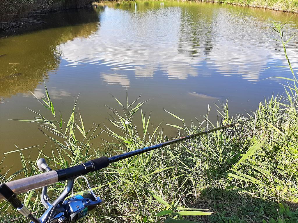 Pescuit la feeder pe lacul Delta din Glodeni.